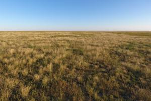 Land for Sale in Colorado