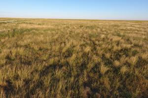 Pasture Land For Sale - Otero County in Otero, CO (2 of 12)