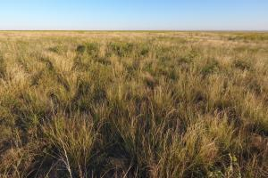 Pasture Land For Sale - Otero County in Otero, CO (3 of 12)