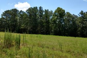 Awesome Development Property - Chatham County NC