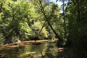 Broadway Creek Recreational Homesite - Anderson County SC