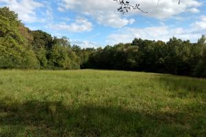 Income Producing Property/Bennett  - Chatham County NC