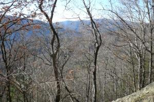 Gorgeous Views! - Mitchell County NC