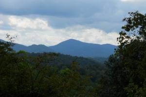 Mountain Hunting and Fly Fishing - Mitchell County NC