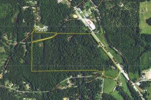 114 acres US 27 Commercial/Residential Development Potential