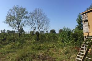 Old Camden Road Acreage with Home - Darlington County SC