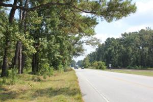Byrd 18 Acre Homesite - Dorchester County SC