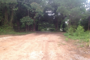 Summerville Recreational Investment Tract - Chattooga County GA