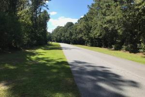 Five Acre Lot Richmond Hill - Bryan County GA