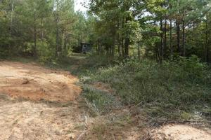 Osborn Creek Hunting and Timber Tract in Perry, AL (9 of 12)