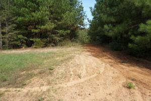 Osborn Creek Hunting and Timber Tract in Perry, AL (6 of 12)