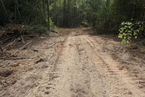 Osborn Creek Hunting and Timber Tract in Perry, AL (8 of 12)