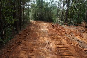 Osborn Creek Hunting and Timber Tract in Perry, AL (10 of 12)