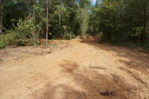 Osborn Creek Hunting and Timber Tract in Perry, AL (5 of 12)