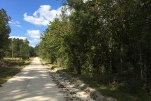 Lake Marion Residential Development Opportunity - Clarendon County SC