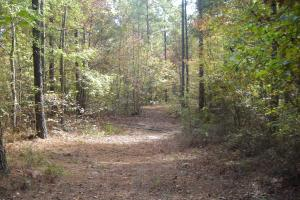 Edna Road Timber Tract (64 Acres) in Haralson, GA (3 of 15)