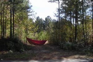 Edna Road Timber Tract (64 Acres)