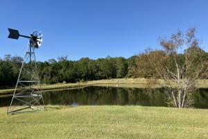 Peterman Turn-Key Lodge & Lake Retreat in Monroe, AL (14 of 70)