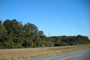 Hwy 27 Timber Tract (33+ Acres) - Heard County GA