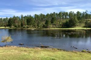 Whitehouse Creek Cabin & Lake Retreat - Baldwin County AL