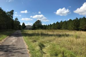 Recreation and Timber Investment - Edgefield County SC