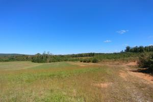 Premier Flat River Farm with Views - Durham County NC