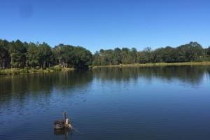 Luverne Weekend Getaway with Cabin and Lake  in Crenshaw, AL (9 of 32)
