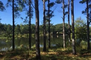 Luverne Weekend Getaway with Cabin and Lake  in Crenshaw, AL (14 of 32)