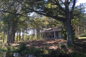 Luverne Weekend Getaway with Cabin and Lake  in Crenshaw, AL (27 of 32)