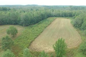 Sneads Creek Hunting Opportunity - Pickens County AL