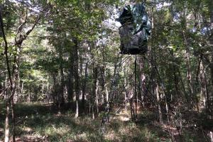 <p>Deer Stand</p>