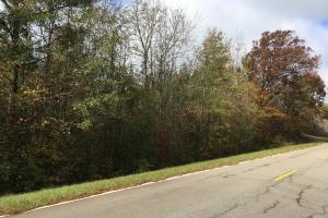 Rural Homesite - Taliaferro County GA