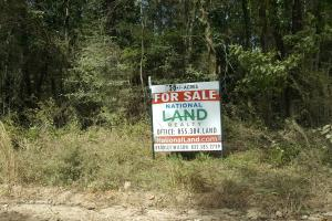 22 Acre Recreational and Hunting Property in Polk, TX (10 of 10)