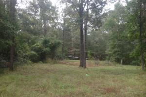 Lake Marion Homesite - Clarendon County SC