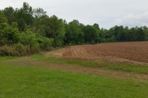 235 ACRES ON GLEATON ROAD, FARM AND RECREATION