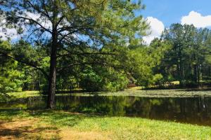 Winnsboro Springs Private Estate with Pond - Fairfield County SC