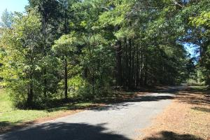 Nixburg Road Hunting/Recreation Tract - Coosa County AL