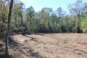 National Forest 10 Acres - Berkeley County SC