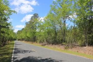 Caton Creek Farms Home Site - Berkeley County SC