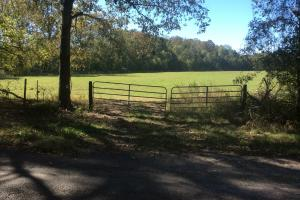 Bolton Mini-farm and Hunting Retreat - Hinds County MS