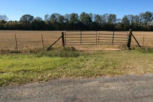 Cattle Ranch with Fantastic Hunting and Fishing - Hinds County MS