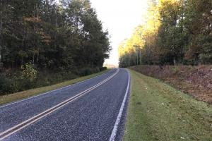 Point Caswell Rd Large Lot - Pender County NC