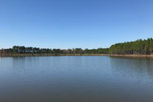 Laurens County Lakes Retreat  - Laurens County GA