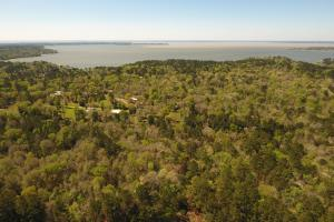 20 Acre Lake Livingston Recreational/Investment Tract in Polk, TX (4 of 16)
