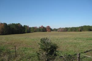 <p>Pasture off Martin Road 35 +/- acres.</p>