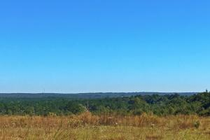 Chunchula Highlands Homesite - Mobile County AL