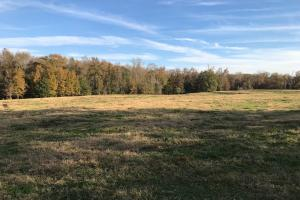 Homesite Development Opportunity  - Greenville County SC