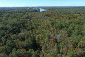 Near Coffeeville Hunting, Fishing and Recreation - Clarke County AL