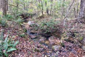 Harris County Hunting Property with Lake  in Harris, GA (10 of 27)