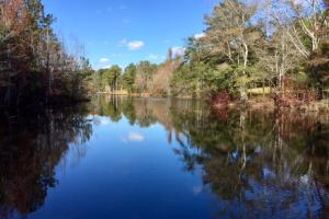 Harris County Hunting Property with Lake  - Harris County GA